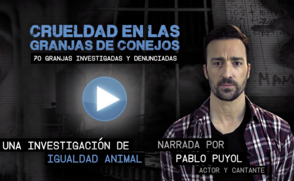 pablo_puyol_igualdad_animal_captura.jpeg